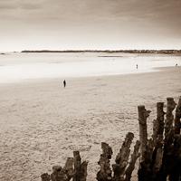 Photographe Rennes, photo artistique de paysages, personnes, faune, flore, lieux, architecture, scènes de vie...